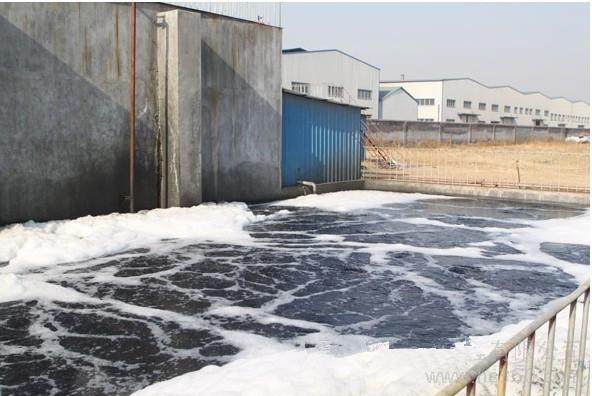 湖南永州市麗華醫藥污水處理項目
